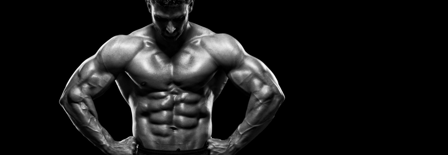 MUSCLE BUILDING ONLINE COURSE